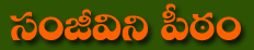 Sanjeevini Peetam Telugu
