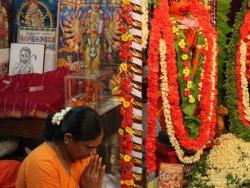 akshaya-thrithiya-celebrations-2014-7