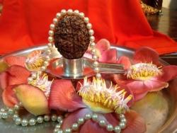 aadi-amavasya-26-7-2014-3-fileminimizer