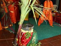 Anjaneya veera dance (6)