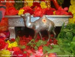 bheeshma-ekadasi-005