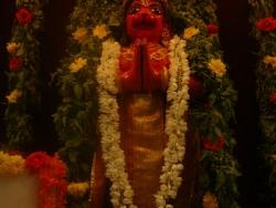 bheeshma-ekadasi-008