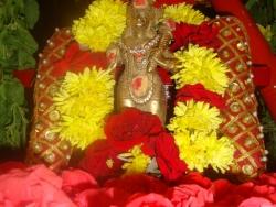 bheeshma-ekadasi-009