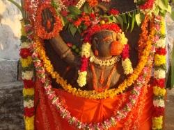 dusi-hanuman-8-04-2012-012