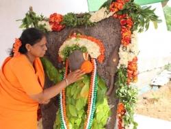Earikaatha Anjaneyar 15-8-2014 (11)