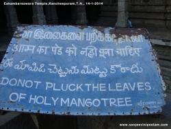 eakambareswara-temple-007