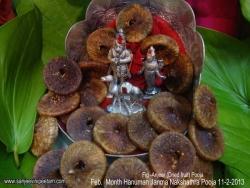 february-nakshathra-pooja-2013-003