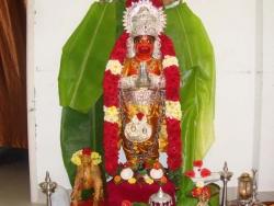february-nakshathra-pooja-2013-004