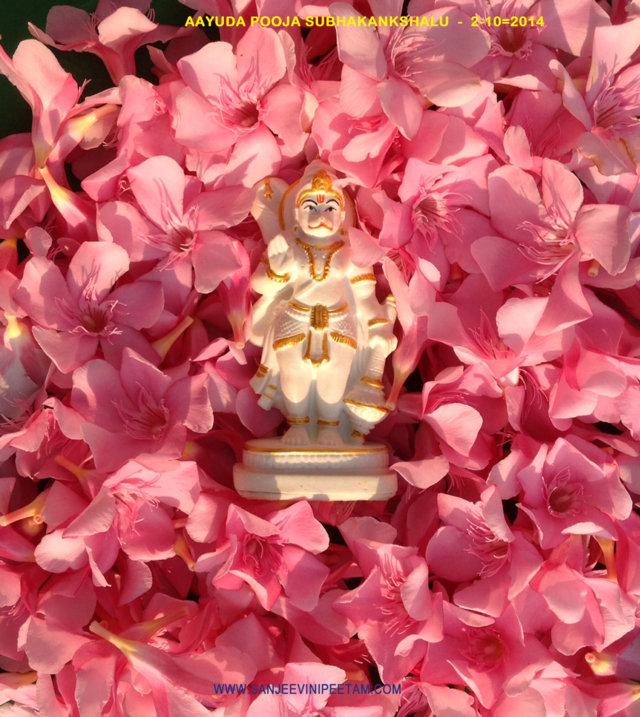 Sanjeevinipeetam (10)