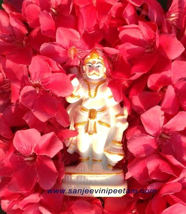 Sanjeevinipeetam (12)
