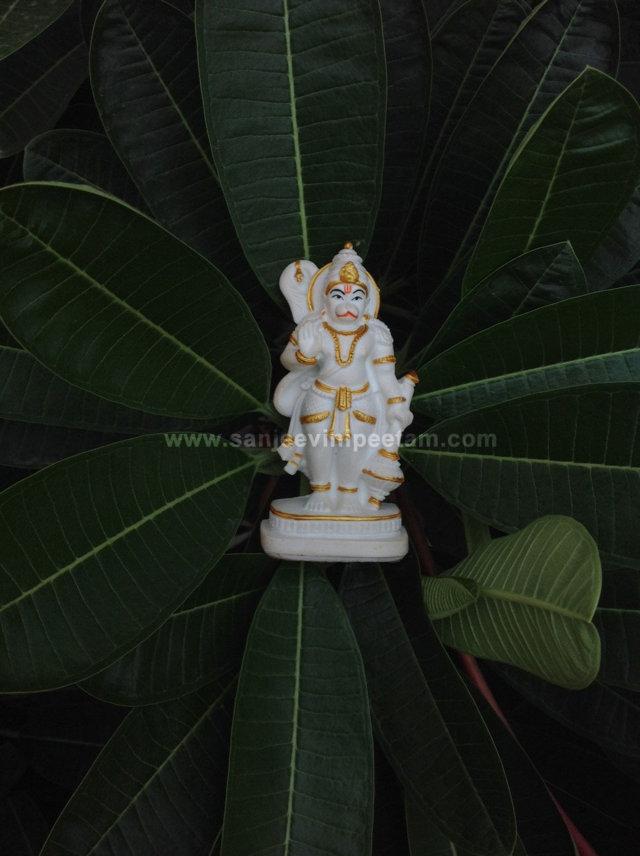 hanuma-sanjeevinipeetam-4