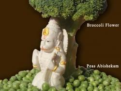 abhaya-hastha-hanuman