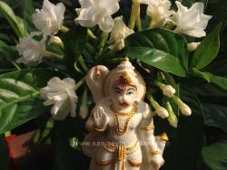 hanuma-sanjeevinipeetam-1