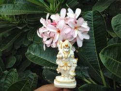 hanuma-sanjeevinipeetam-14