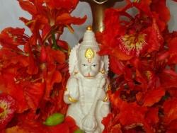 hanuma-sanjeevinipeetam-23