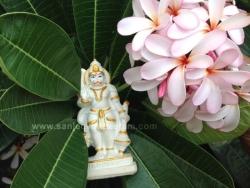 hanuma-sanjeevinipeetam-3