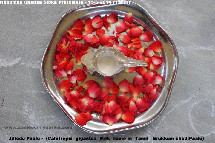hanuman-chalisa-sloka-prathishta-13