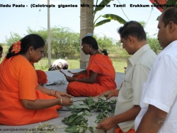 hanuman-chalisa-sloka-prathishta-12