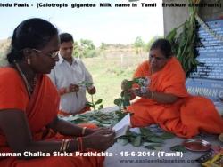 hanuman-chalisa-sloka-prathishta-9