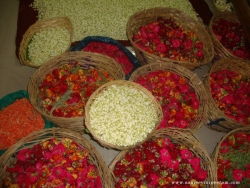 hanuman-jayanthi-2012-004