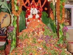 hanuman-jayanthi-2012-019