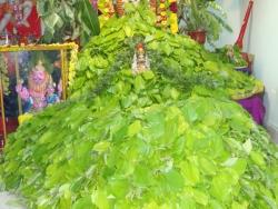 hanumath-vratam-2010-06