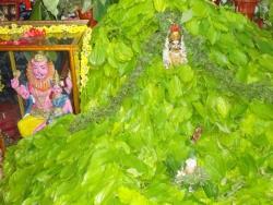 hanumath-vratam-2010-07