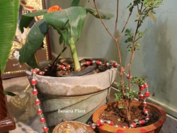 january-nakshathra-pooja-005
