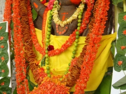 july-nakshathra-pooja-8-7-2012-016