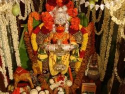 june-nakshathra-pooja-2012-010
