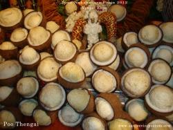 june-nakshathra-pooja-2012-013