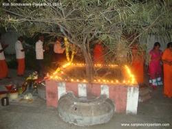 koti-somavaram-pooja-010