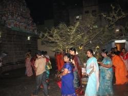 Koti somavaram 2014 (15)