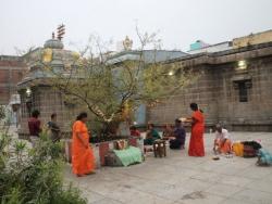 Koti somavaram 2014 (2)