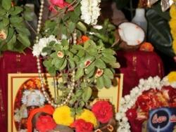 Krishna jayanthi 2014  (5)