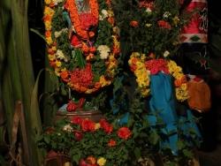 ksheerabdi-dwadasi-2013-019