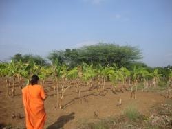 Mathaji garden (11)