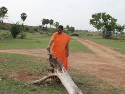 Mathaji garden (12)