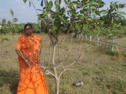 Mathaji garden (13)