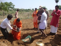 Mathaji garden (6)