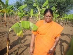 Mathaji garden (9)
