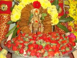 nakshathra-pooja-feb-2011-02