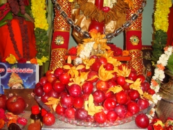 nakshathra-pooja-jun-2011-01