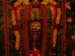 nakshathra-pooja-20-7-2011-2
