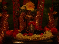 nakshathra-pooja-20-7-2011-5