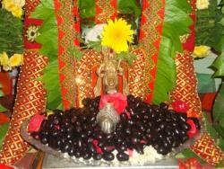 nakshathra-pooja-20-7-2011-8