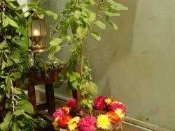 november-nakshathra-pooja-2012-004