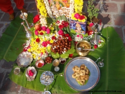 ratha-sapthami-2014-002