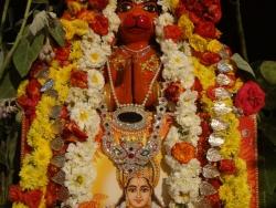 ratha-sapthami-2014-12