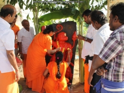 29th-year-hanumath-vratham-celebrations-019